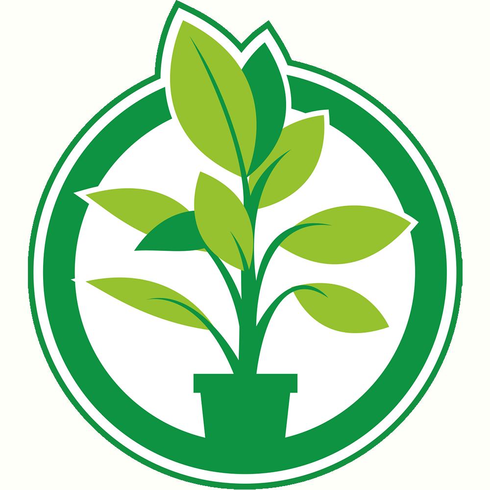 Plantje.nl Kamerplanten