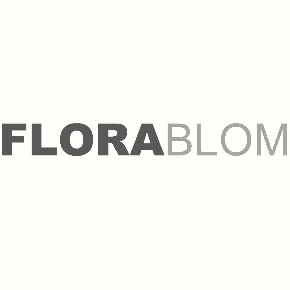 Florablom.nl Flora